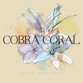 Pra Cada um Ser o Que É by Quarteto Cobra Coral