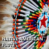 Play & Download Native American Flute by Native American Flute | Napster