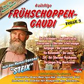 Play & Download A zünftige Frühschoppen-Gaudi - Folge 3 by Various Artists | Napster