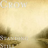 Play & Download Standing Still (feat. Mrs. Remarkable) by Crow (60's) | Napster
