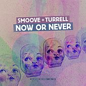 Now or Never (Radio Edit) - Single by Smoove & Turrell