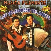 Play & Download 20 Exitos Musica Flamante by Los Relampagos Del Norte | Napster