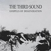 Gospels of the Degeneration by The Third Sound