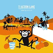 Play & Download Painting Coconuts by 11 Acorn Lane | Napster