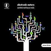 Play & Download Electronic Nature, Vol. 13 - Aesthetic Tech-House Tracks! by Various Artists | Napster