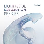 Play & Download Revolution Remixes, Pt. 2 by Liquid Soul | Napster