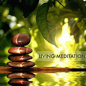 Play & Download Living Meditation - Deep Meditation Music & Buddhist Relaxation Songs to Learn How to Meditate by Sounds of Nature Relaxation | Napster