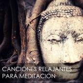 Canciones Relajantes para Meditacion - Música Antiestrés para Combatir la Ansiedad de Meditacion Budista Maestros