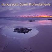 Musica para Dormir Profundamente – Canciones para Dormir y Callarse, Musica Relajante para Niños y toda la Familia de Musica para Dormir 101