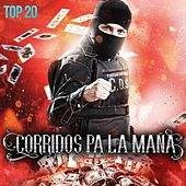 Corridos Pa la Maña: Top 20 by Various Artists