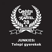 Play & Download Telepi Gyerekek by Junkies | Napster