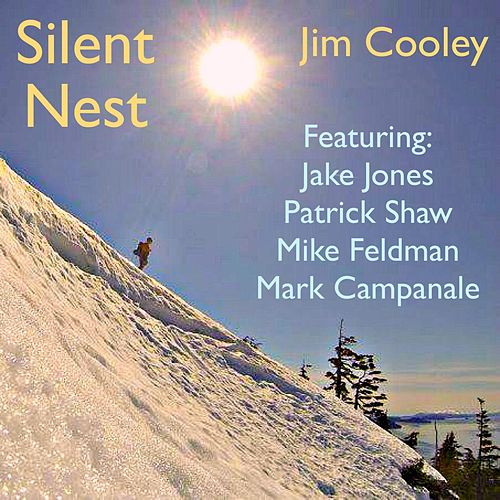 Play & Download Silent Nest (feat. Patrick Shaw, Mark Campanale, Mike Feldman & Jake Jones) by Jim Cooley | Napster