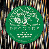 Play & Download Alligator Records 45th Anniversary Collection by Various Artists | Napster