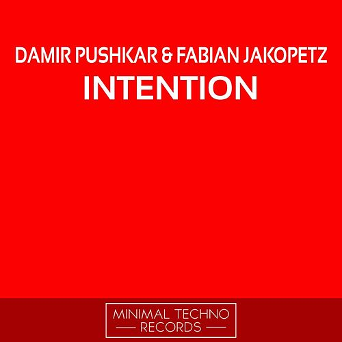 Play & Download Intention by Damir Pushkar | Napster