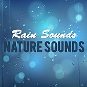 Play & Download Rain Sounds & Nature Sounds by Various Artists | Napster