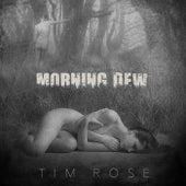 Morning Dew by Tim Rose