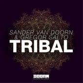 Play & Download Tribal by Sander Van Doorn | Napster