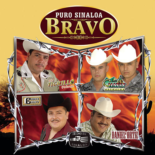 Play & Download Puro Sinaloa Bravo by Various Artists | Napster
