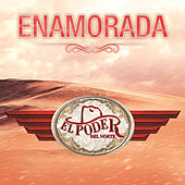 Play & Download Enamorada by El Poder Del Norte | Napster