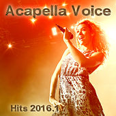 Acapella Voice Hits 2016.1 by Various Artists