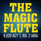Mozart: The Magic Flute, K. 620, Act II: Aria by Piano Man
