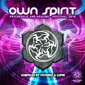 Play & Download Own Spirit Festival 2016 - EP by Various Artists | Napster