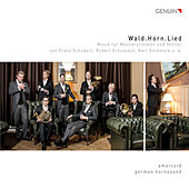 Wald.Horn.Lied by Various Artists