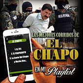 Play & Download Los Mejores Corridos del Chapo en Mi Playlist by Various Artists | Napster