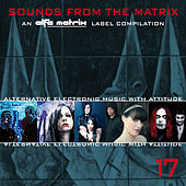 Play & Download Sounds from the Matrix 017 by Various Artists | Napster