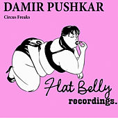 Play & Download Circus Freaks - Single by Damir Pushkar | Napster