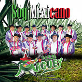 Soy Mexicano by Banda Maguey