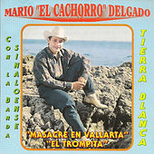Play & Download Masacre en Vallarta by Mario