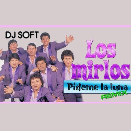Play & Download Pideme la Luna (Remix) by Los Mirlos | Napster