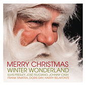 Merry Christmas - Winter Wonderland von Various Artists