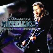 Woodstock 1994 (Live) by Metallica