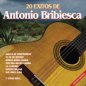 Play & Download 20 Éxitos de Antonio Bribiesca by Antonio Bribiesca | Napster