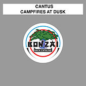 Play & Download Campfires At Dusk by Cantus | Napster