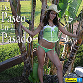 De Paseo en el Pasado by Various Artists