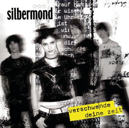 Verschwende deine Zeit by Silbermond