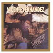 Play & Download El Cuatrero by Vicente Fernández | Napster