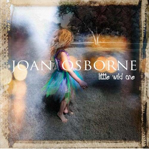 Play & Download Little Wild One by Joan Osborne | Napster