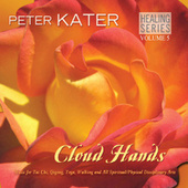 Play & Download Cloud Hands - Healing Series Volume 5 by Peter Kater | Napster