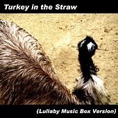Play & Download Turkey in the Straw (Lullaby Music Box Version) by Hamasaki | Napster