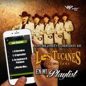 Play & Download Los Mejores Corridos de los Tucanes de Tijuana en Mi Playlist by Los Tucanes de Tijuana | Napster