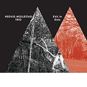 Play & Download Evil In Oslo by Hedvig Mollestad Trio | Napster