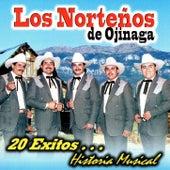 Play & Download 20 Exitos Historia Musical by Nortenos De Ojinaga | Napster