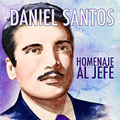Play & Download Homenaje al Jefe by Various Artists | Napster