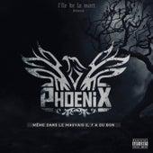 Play & Download Même dans le mauvais il y a du bon by Phoenix | Napster