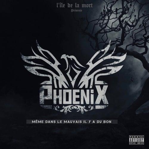 Même dans le mauvais il y a du bon by Phoenix