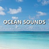 Play & Download Ocean Sounds by Ocean Sounds (1) | Napster